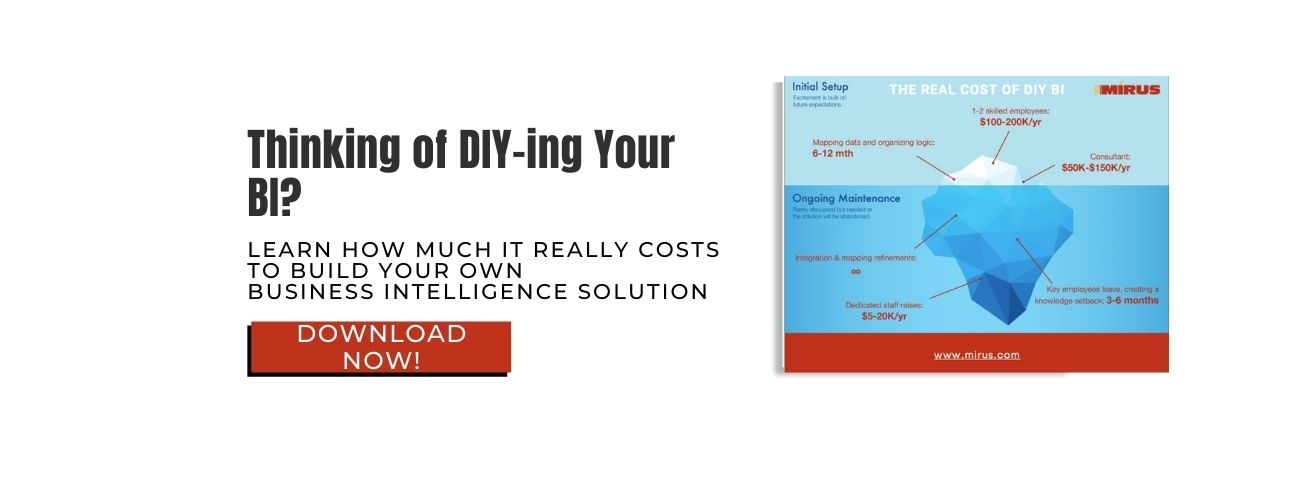 The Real Cost of DIY BI CTA